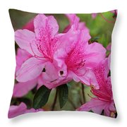 Smiling Azalea  Throw Pillow