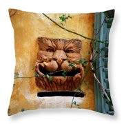Smiling Cat Mail Box Throw Pillow