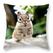 Smiling Chipmunk Throw Pillow