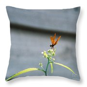 Smiling Dragonfly 2 Meerrp Throw Pillow