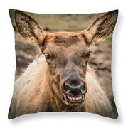 Smiling Elk Throw Pillow