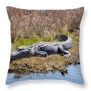 Smiling Gator Throw Pillow