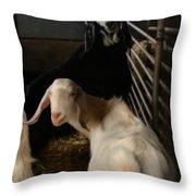 Smiling Goats  Throw Pillow