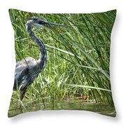 Smiling Heron Throw Pillow