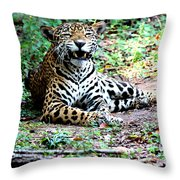 Smiling Jaguar Throw Pillow