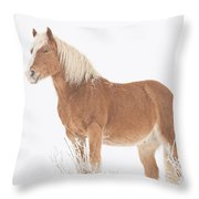 Smiling Palomino In The Snow Throw Pillow