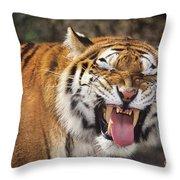 Smiling Tiger Endangered Species Wildlife Rescue Throw Pillow