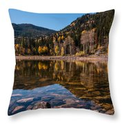 Smith And Morehouse Reflections Throw Pillow