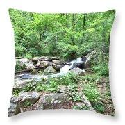 Smith Creek Downstream Of Anna Ruby Falls - 2 Throw Pillow