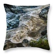 Smith River Throw Pillow