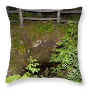 Smithwick Copper Mine Isle Royale National Park Throw Pillow