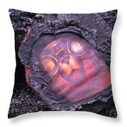 Smokey Bear All Burned Throw Pillow