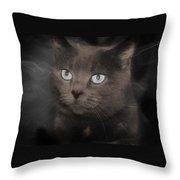 Smokey Cat Throw Pillow
