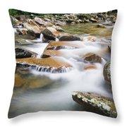 Smokey Mountain Creek Throw Pillow by Adam Romanowicz