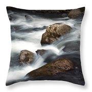 Smokey Mountain Stream In Autumn No.11 Throw Pillow
