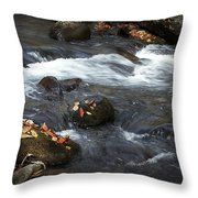 Smokey Mountain Stream In Autumn No.2 Throw Pillow