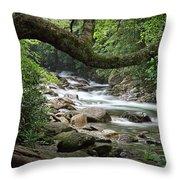 Smokey Mountain Stream. No 547 Throw Pillow