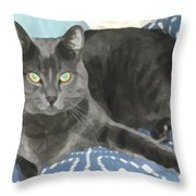 Smokey On A Blue Blanket Throw Pillow
