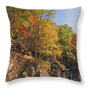 Smoky Mountain Autumn Throw Pillow