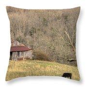 Smoky Mountain Barn 10 Throw Pillow