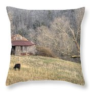 Smoky Mountain Barn 3 Throw Pillow