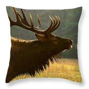 Smoky Mountain Bugle Throw Pillow