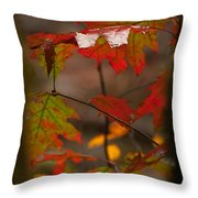 Smoky Mountain Color II Throw Pillow