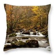 Smoky Mountain Gold II Throw Pillow