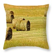 Smoky Mountain Hay Throw Pillow by Frozen in Time Fine Art Photography