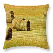Smoky Mountain Hay Throw Pillow