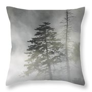 Smoky Mountain Mist Throw Pillow