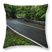 Smoky Mountain Road After Spring Rain E70 Throw Pillow