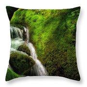 Smoky Mountain Stream And Boulders E223 Throw Pillow