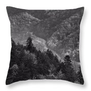 Smoky Mountain View Black And White Throw Pillow