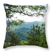 Smoky Mountain View Laurel Falls Trail Throw Pillow