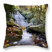 Smoky Mountain Waterfall Throw Pillow