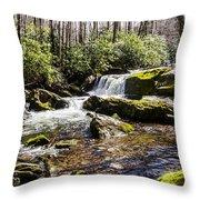 Smoky Mountain Waterfalls Throw Pillow