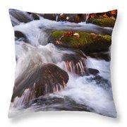 Smoky Mtn Stream - 429 Throw Pillow