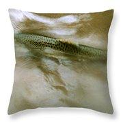 Smolt Swim Throw Pillow