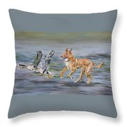 Smooth Collie Trying To Herd Geese Throw Pillow