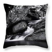 Smooth Flows Throw Pillow
