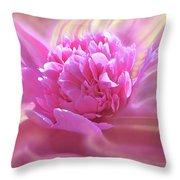 Smooth Pink Throw Pillow