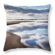 Smooth Water Reflections Throw Pillow