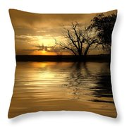 Smooth Yellow Throw Pillow