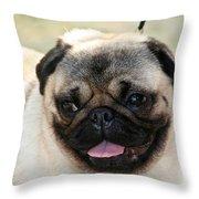 Smug Pug Throw Pillow