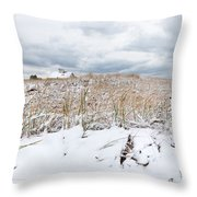 Smuggler's Beach Snow Cape Cod Throw Pillow by Michelle Wiarda