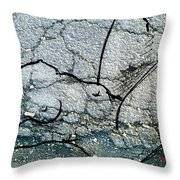 Sn 1 B  Throw Pillow