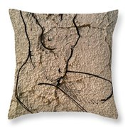 Sn 2 A Throw Pillow