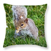 Snack Time For Squirrels Throw Pillow