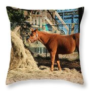 Snacking On Some Hay Throw Pillow